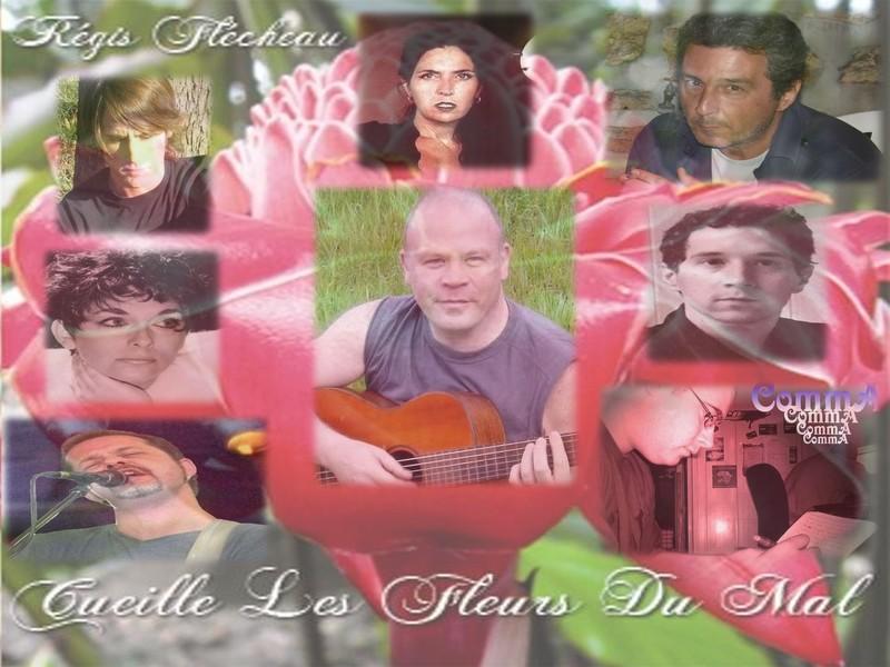 Montage-pub album `Cueille les Fleurs du Mal`